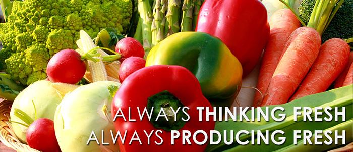 Basha Foods International Online